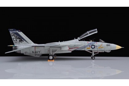 United States Navy VF-143 Pukin Dogs F-14A Tomcat AG100